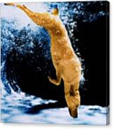 Diving Dog Underwater Canvas Print