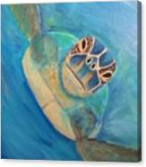 Diving Sea Turtle Canvas Print