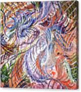 Dizzy Feathers Canvas Print