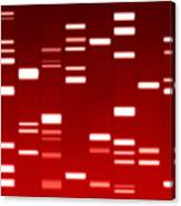 Dna Red Canvas Print