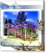Do-00013 Wisteria Branches Canvas Print