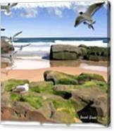 Do-00046 Birdie Beach Canvas Print