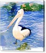 Do-00088 Pelican Canvas Print