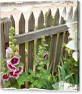 Do-00099 Fence-flowers Canvas Print
