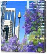 Do-00106 Spring In Sydney Canvas Print