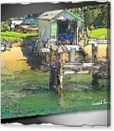 Do-00128 Boatshed At Brisbane Water Canvas Print