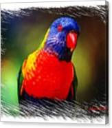 Do-00153 Colourful Lorikeet Canvas Print