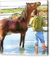 Do-00421 Washing Horse In Mina Canvas Print