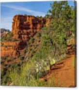 Doe Mountain Trail Canvas Print