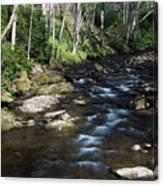 Doe River In April Canvas Print