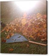 Dog And Autumn Leaves Canvas Print