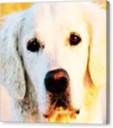 Dog Art - Golden Moments Canvas Print