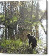 Dog Exploring Mississippi River Bank Canvas Print