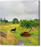 Dog Heaven - Abbie's Edit Challenge 3 Canvas Print