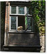 Dog In A Window Above The Canal In Bruges Belgium Canvas Print