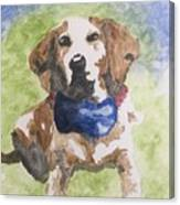 Dog In Bow Tie Canvas Print