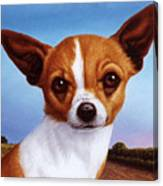 Dog-nature 3 Canvas Print