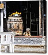 Dog Tavern With Oranges Canvas Print