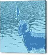 Dog Vs Perch 2 Canvas Print
