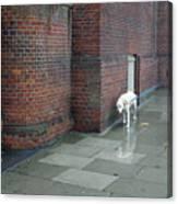 Doggie  Strolling 2 Canvas Print