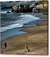Dogs Beach Santa Cruz California Nature  Canvas Print