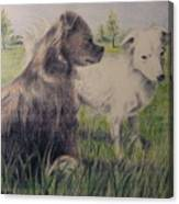 Dogs In A Field Canvas Print