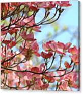 Dogwood Flowering Trees Pink Dogwood Flowers Baslee Troutman Canvas Print