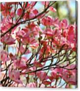 Dogwood Tree Landscape Art Prints Blue Sky Baslee Troutman Canvas Print