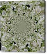 Doily Of Flowers Canvas Print