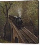 Dolgoch Viaduct Canvas Print