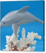 Dolphin On Coral Canvas Print