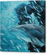 Dolphin With Small Fish Canvas Print