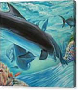 Dolphins At Play Canvas Print
