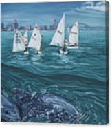 Dolphins In Corpus Christi Bay Canvas Print