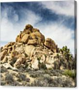 Dome Rock - Joshua Tree National Park Canvas Print