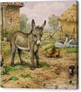 Donkey And Farmyard Fowl  Canvas Print