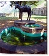Donkey Fountain Canvas Print