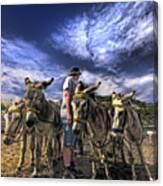 Donkey Rides Canvas Print