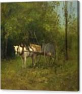 Donkey With Cart Canvas Print