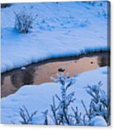 Donnelly Creek In Winter Canvas Print