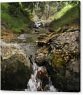 Donner Creek Canvas Print