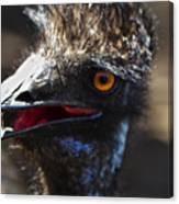 Dont Mess With The Emu Canvas Print