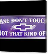 Don't Touch My Car Canvas Print