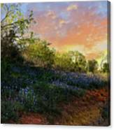 Donup Road Canvas Print