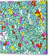 Doodle Bug 3 Canvas Print