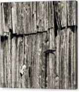 Door Latch And Hinges 3 Canvas Print