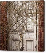 Door To....? Canvas Print