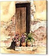 Door With Flowers Canvas Print