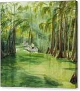 Dora Passage Canvas Print