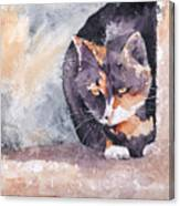 Dottie Canvas Print